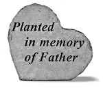 Memorial Stone - Planted in memory of Father