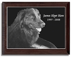 Pet Photo Etched in Marble with Frame 7 x 9