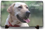 Full Color Photo on Slate, Pet