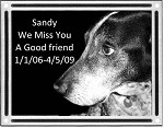 Pet Memorial Plaque for Surface Mounting